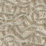 Roberto Cavalli Home No.7 Wallpaper RC18017 By Emiliana Parati For Colemans